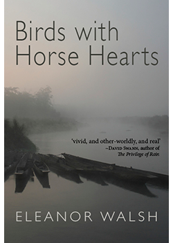 Birds with Horse Hearts : Eleanor Walsh