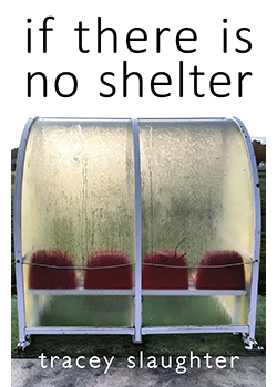 if there is no shelter : Tracey Slaughter